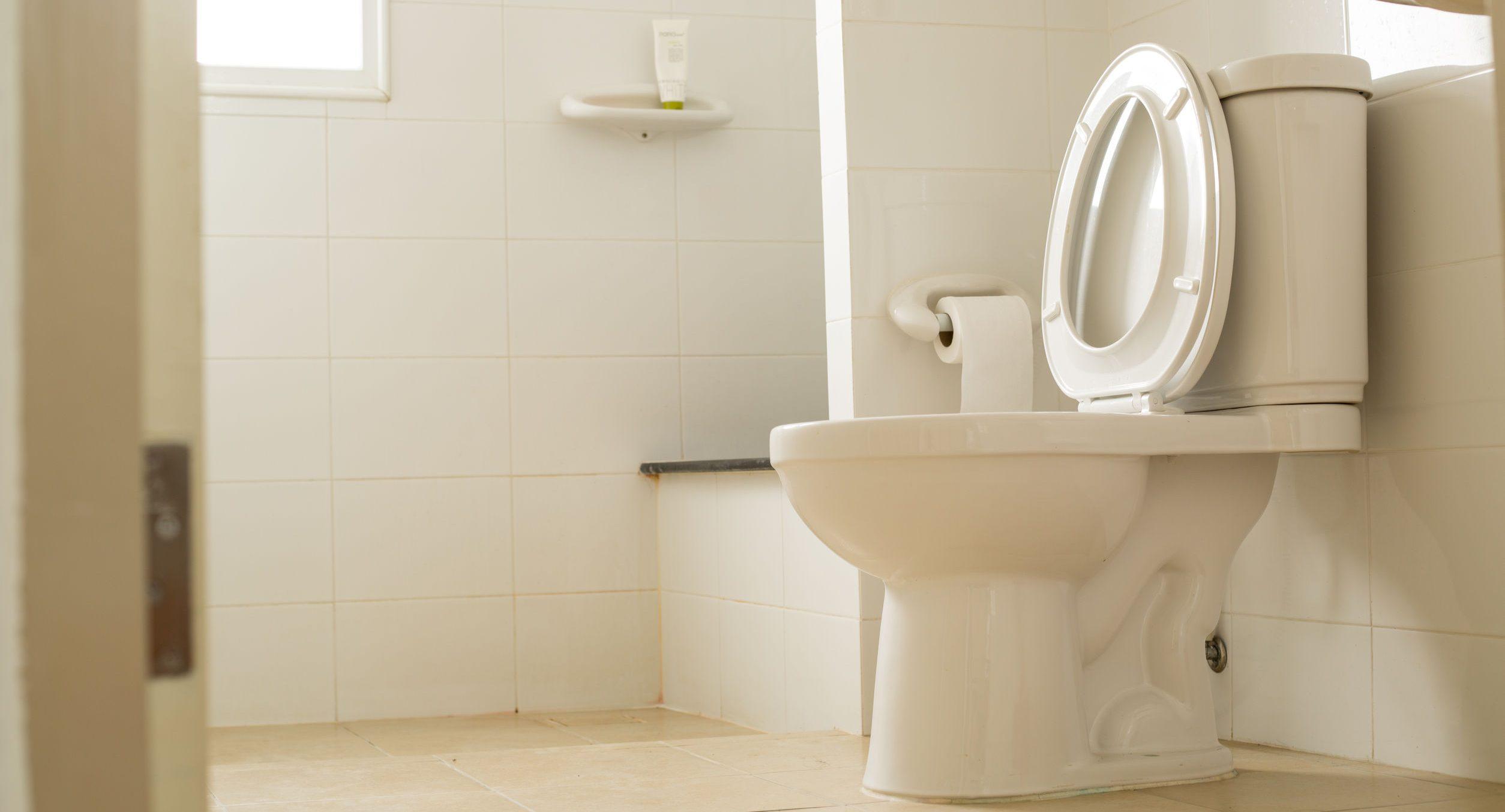 Toilette blanche dans la salle-de-bain